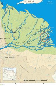 San Francisco de Guayo es una de las 365 comunidades del bajo delta.