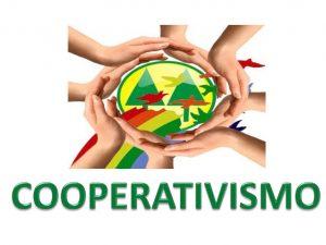 140 cooperativismo