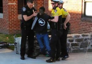 arresto-gray